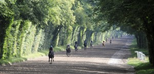 Horse racing Chantilly